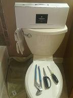 zero waste toilet