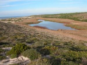 Laguna_Sancha