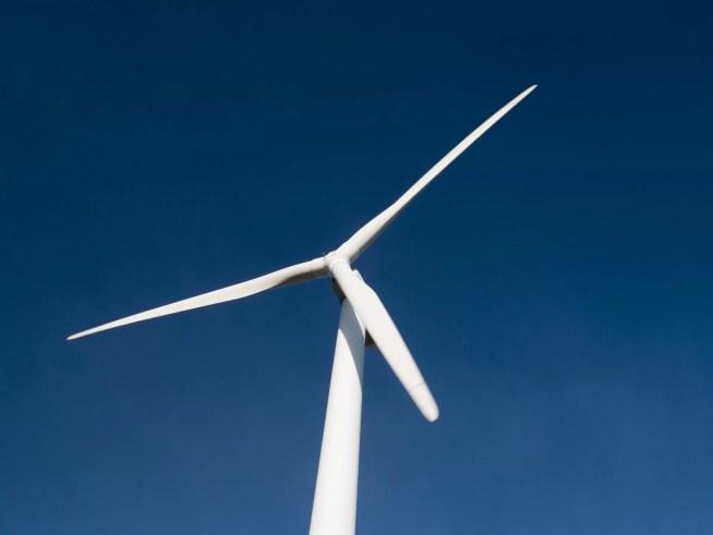 ZERO considera que Portugal tem de fazer transição energética mais rápida para 100% renováveis