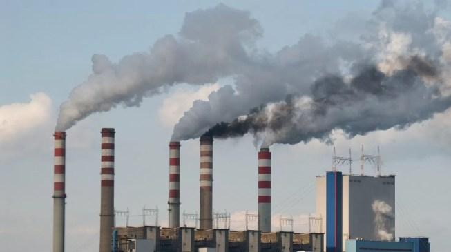Quase um milhão de toneladas de CO2 de redução de emissões na produção de eletricidade nos últimos dois meses