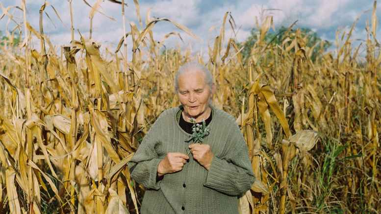 woman standing by corn field during daytie