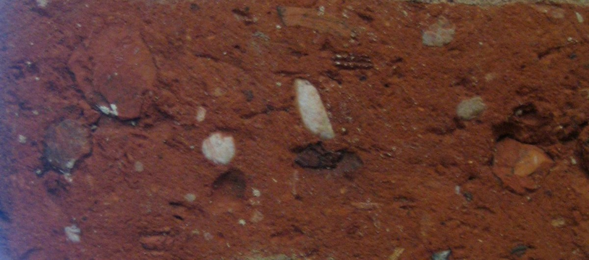 Close up of the original bricks of zero carbon house, Birmingham showing fossils