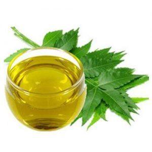 Neem Essential Oil for Skincare
