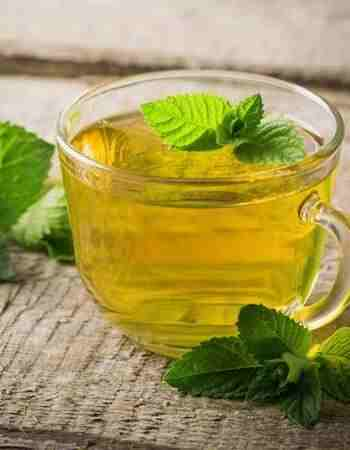 Green Tea with Mint for Weight Loss