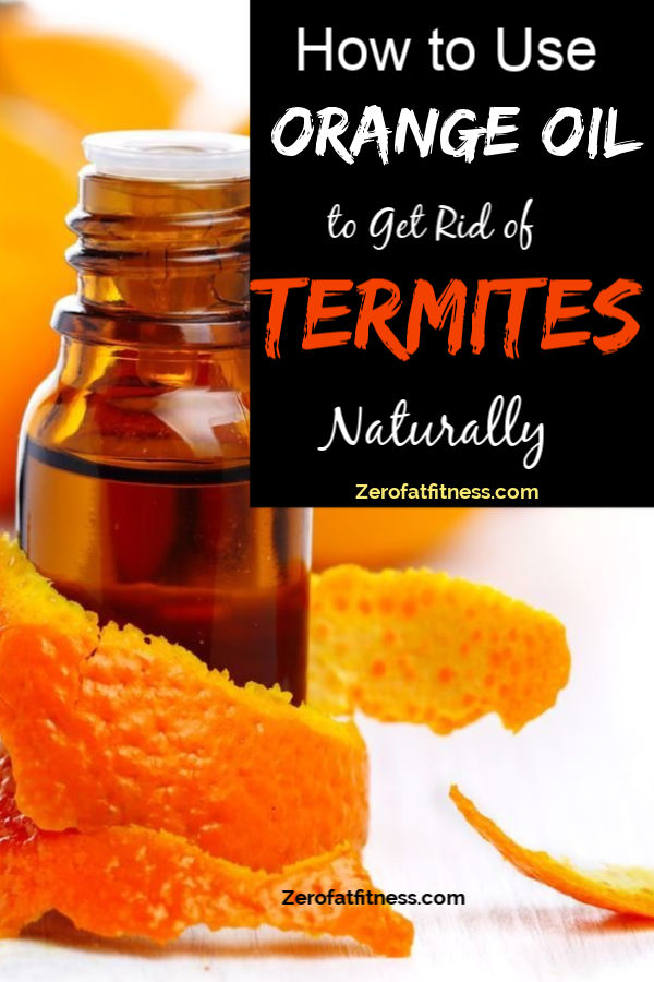 How to Use Orange Oil to Get Rid of Termites Naturally at Home
