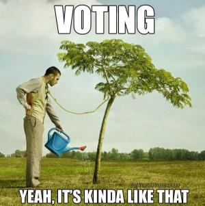 votinghanging