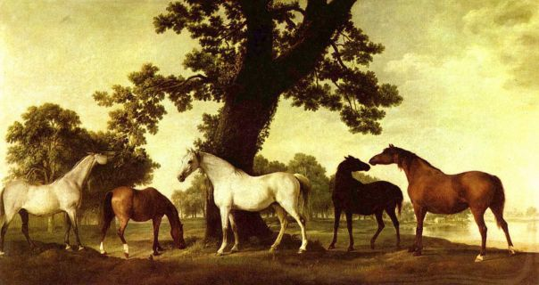 Horses in a Landscape, George Stubbs, , 1760