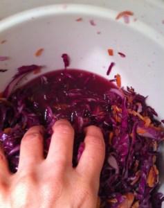 2014-03-23 13.59.08 bowl of juicy cabbage