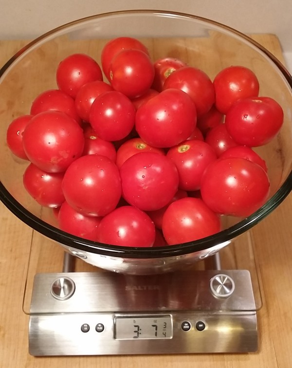 tomato scale