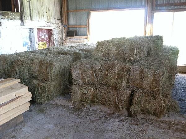 barn hay