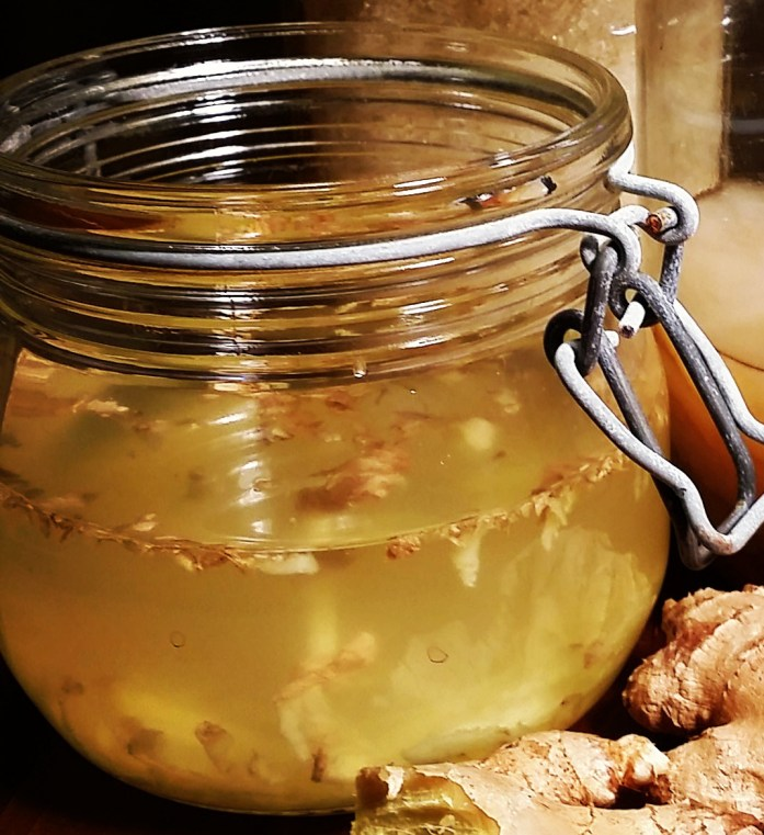 ginger bug closeup