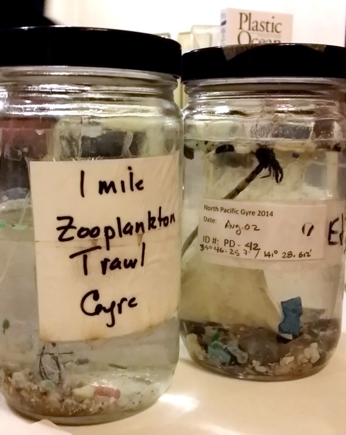 North Pacific Gyre samples