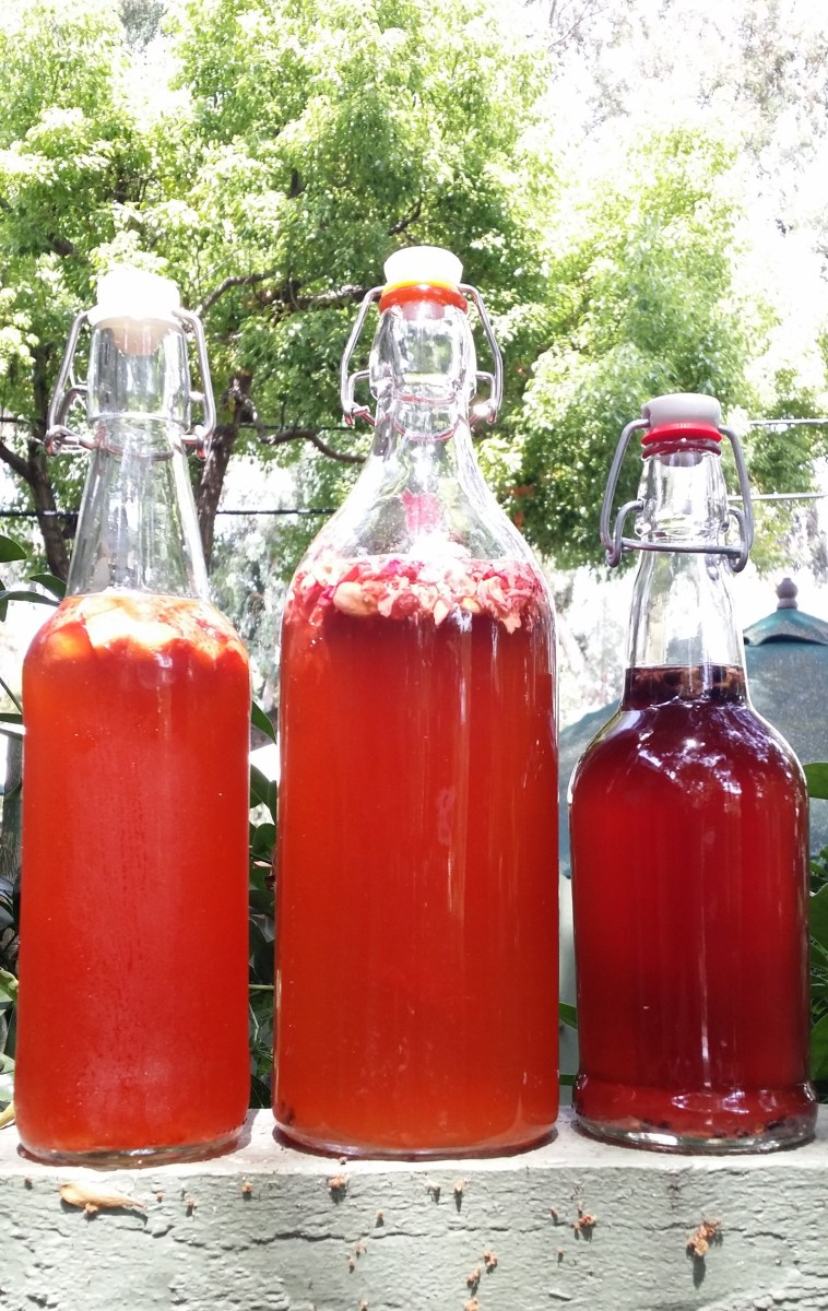 "The Secondary Fermentation: Hippie Jargon for ""Put Kombucha in a Bottle"""