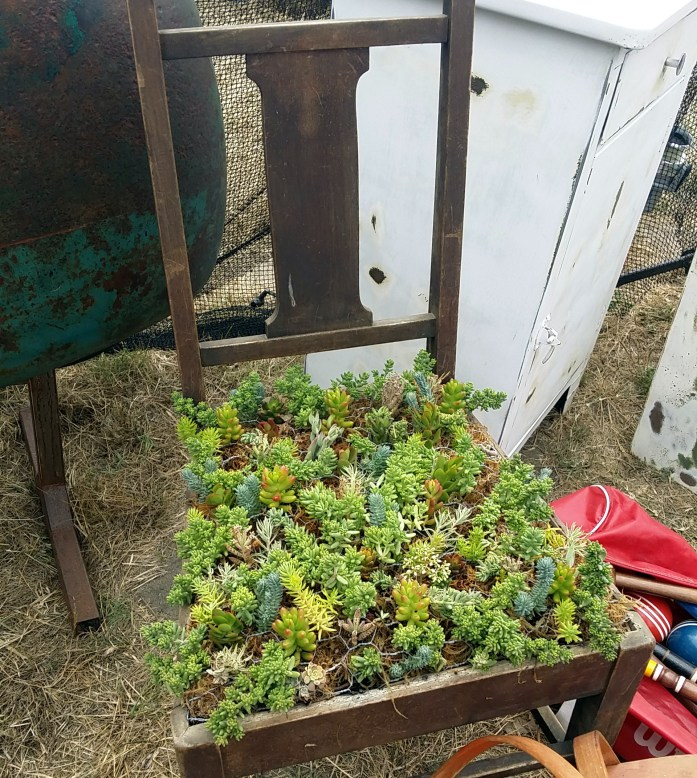new life in an old chair