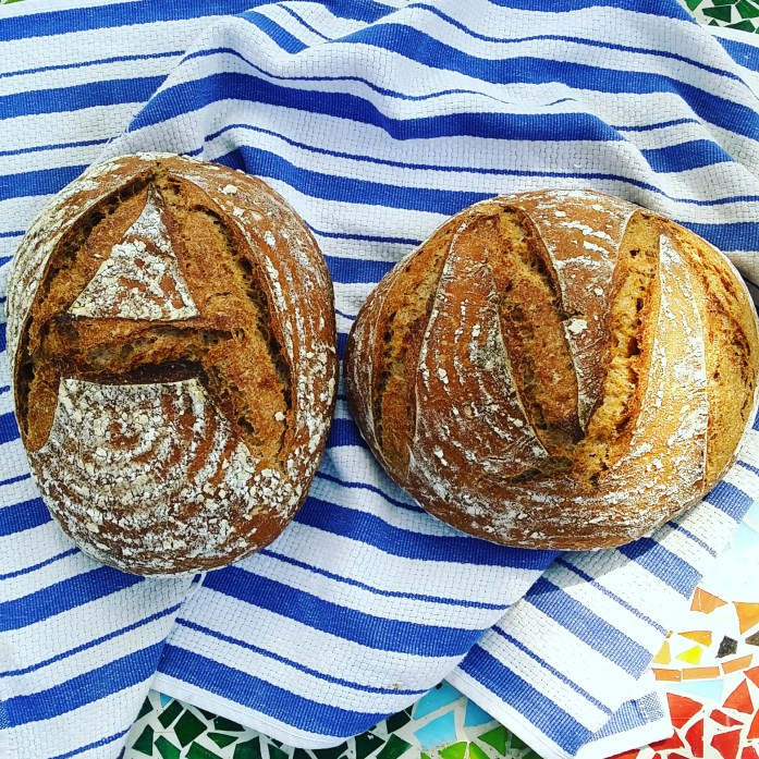 student loaves