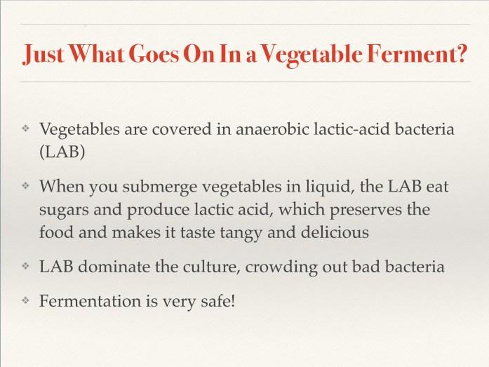 fermentation slide 14