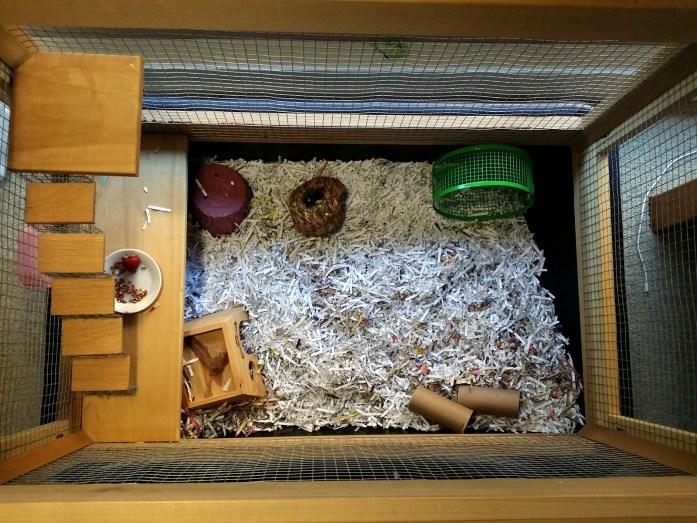 hamster-mansion-floor-plan