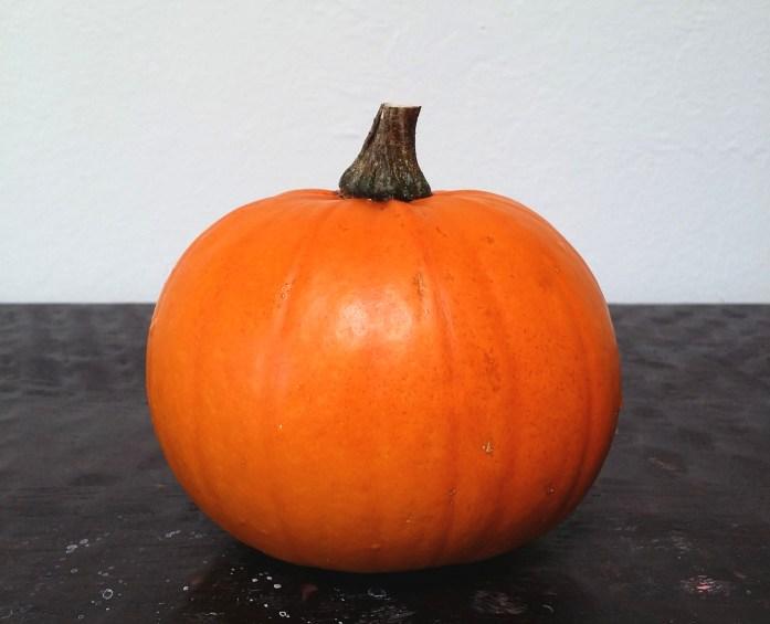 sugar-pie-pumpkin