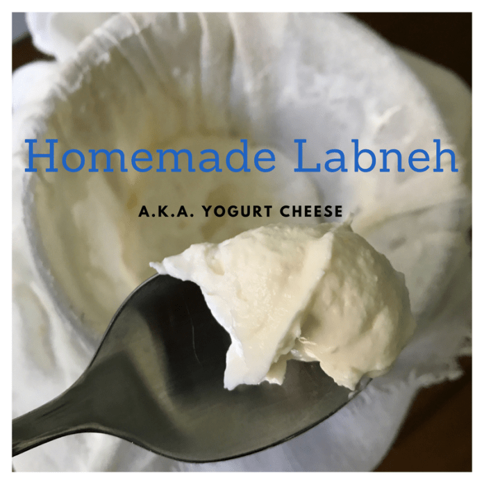 Labneh (aka Yogurt Cheese)