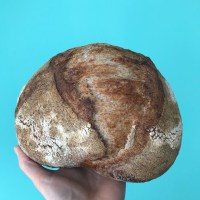 Bake Sourdough Bread Without the Expensive Tools