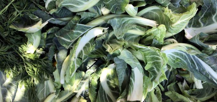 a bin of free cauliflower leaves from the farmers' market