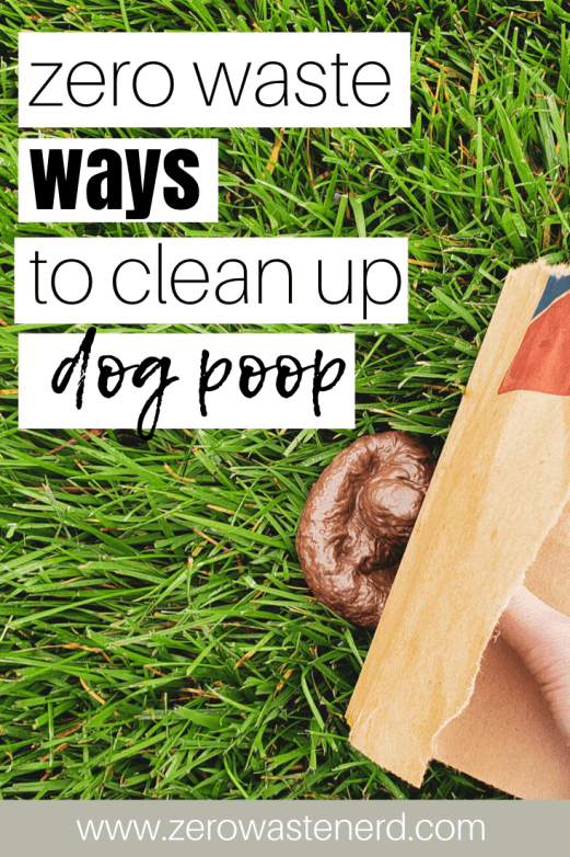 how to clean up dog poop zero waste
