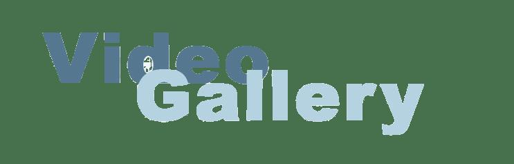 galeriavideos-1 Νικόλαος Ζερβάκης Νικόλαος Ζερβάκης GaleriaVideos