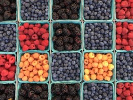Healthy Eating Series All You Need to Know About Antioxidants