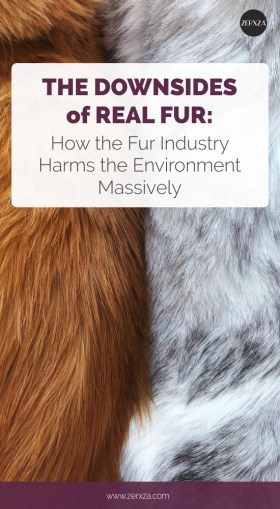 Fur Industry's Downsides - How the Fur Industry Harms the Environment Massively