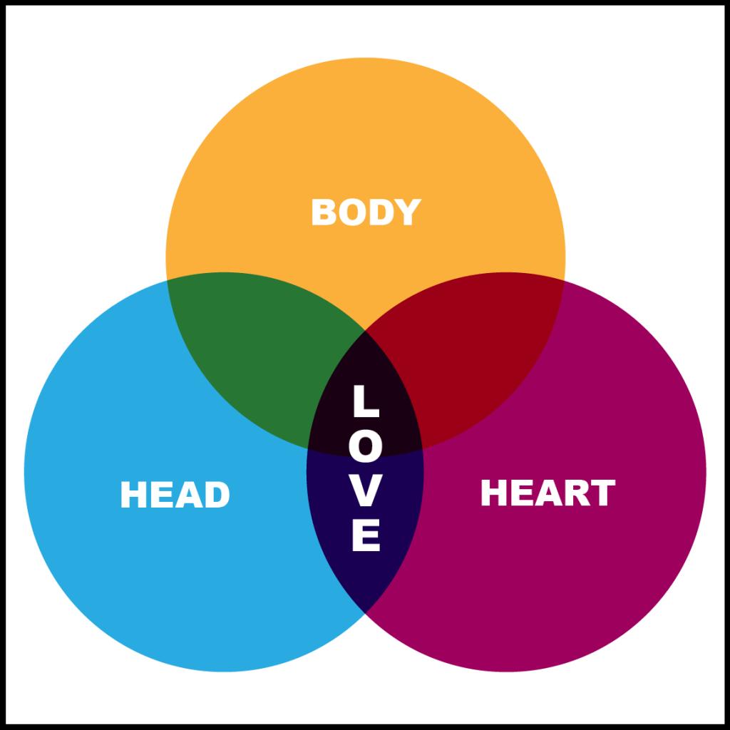 Enneagram heart, head, body types.