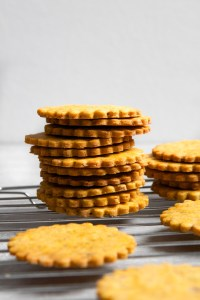 These Pumpkin-Pecan Cookies are tender, and lightly sweetened with a wonderfully nutty note. Made with a pumpkin paste and seasoned with cinnamon, nutmeg, and ginger, these pumpkin cookies are the perfect fall treat. | Zestful Kitchen