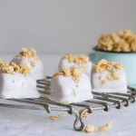 These healthy tropical smoothie bites are enrobed in a silky-smooth lime coconut milk and topped with granola for a satisfying sweet treat. | from Lauren Grant of Zestful Kitchen
