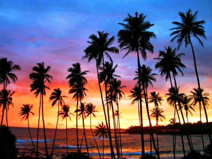 This is a classic itinerary that covers the highlights of Sri Lanka.
