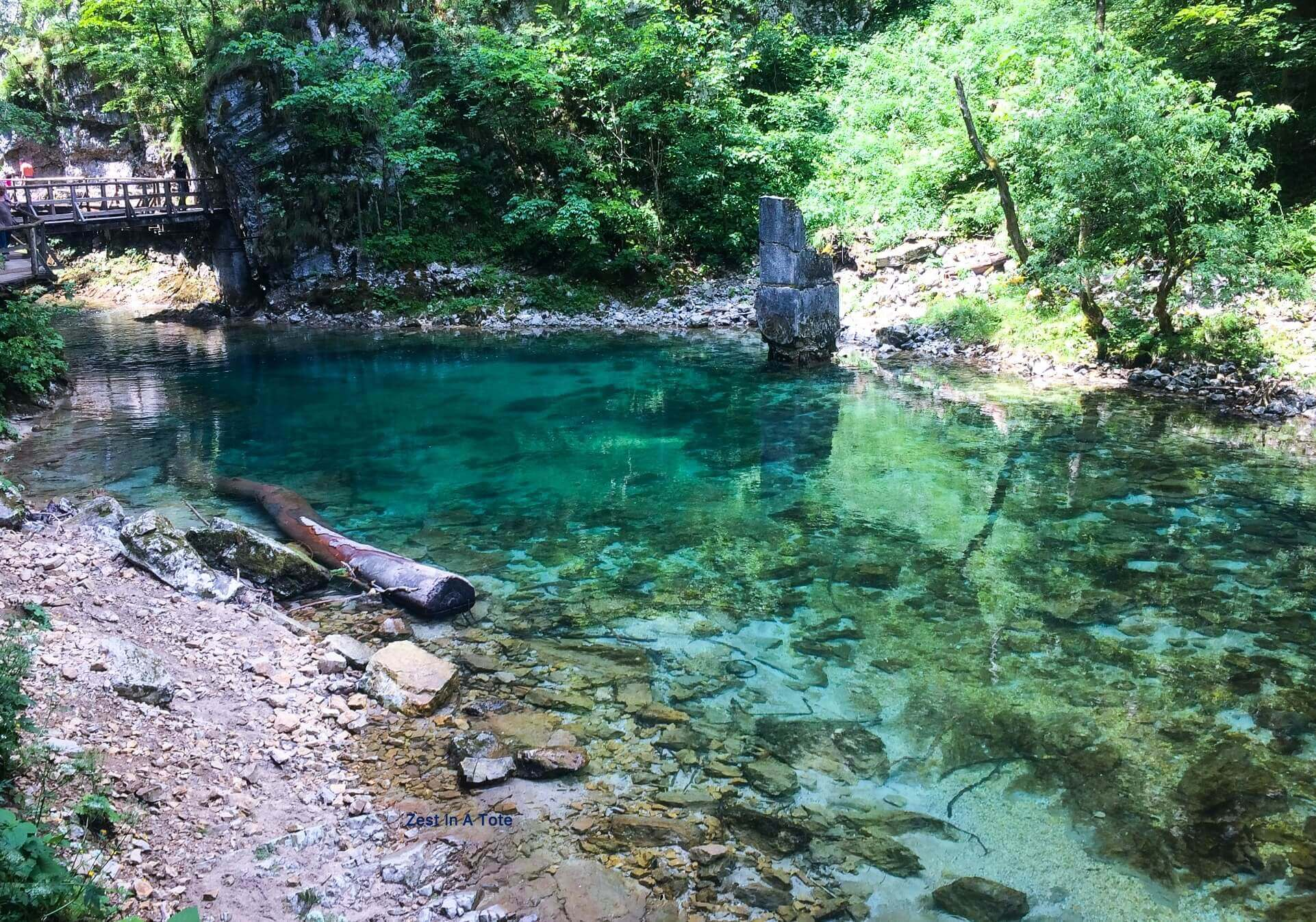 Green and clear water, Vintgar Gorge