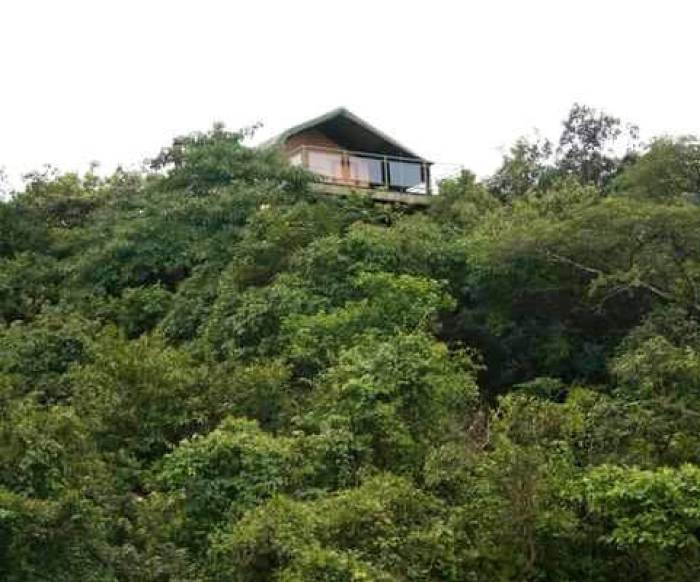 Mumbai weekend getaway: stay in a treehouse