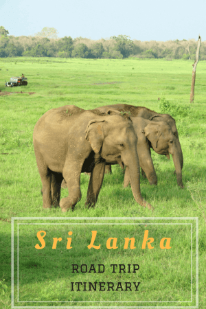 This is a classic Sri Lanka itinerary that gives you a mix of top attractions, culture, food, nature and beach, suited for family travel. #srilanka #srilankaitinerary #srilankain10days #asia