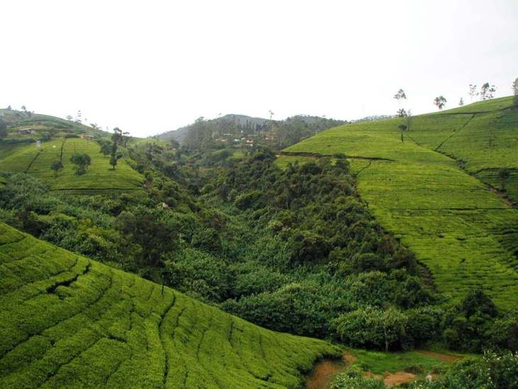 Things to see in sri lanka, beautiful places in sri lanka, beautiful places to visit in sri lanka, places to visit in sri lanka