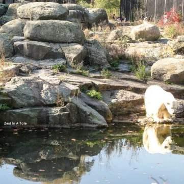 Berlin Zoo: Great for kids