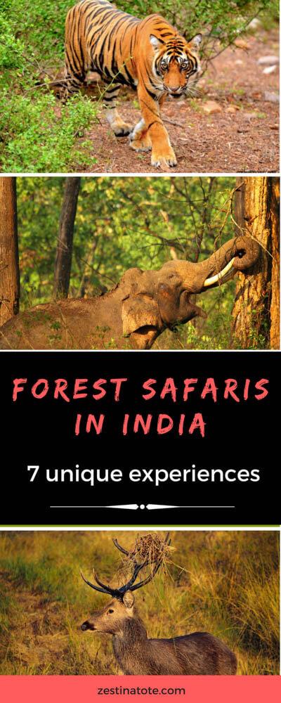 ForestSafarisIndia