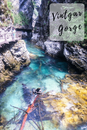 A walk in the Vintgar gorge is an easy and satisfying half-day trip from Bled. It is easy to imagine why this is one of the most popular natural features of Slovenia. #slovenia #vintgargorge #lakebledtovintgargorge #vintgargorgewalk