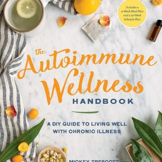 The Autoimmune Wellness Handbook: Presentation & Recipe!