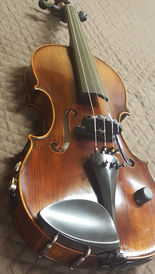 20+ Midi Violin Pickup Pictures and Ideas on Meta Networks