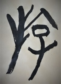 chinese character in oracle bone script