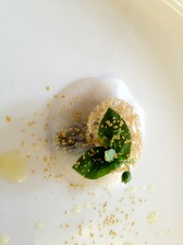 Ravioles de navets et palourdes : algues vertes, gingembre et coques