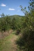 Sentier menant à Rtanj