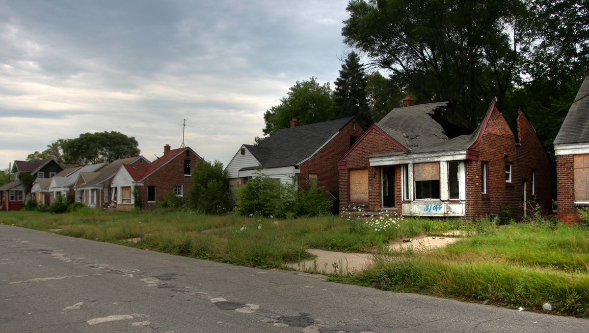 Detroit Urban Meadow