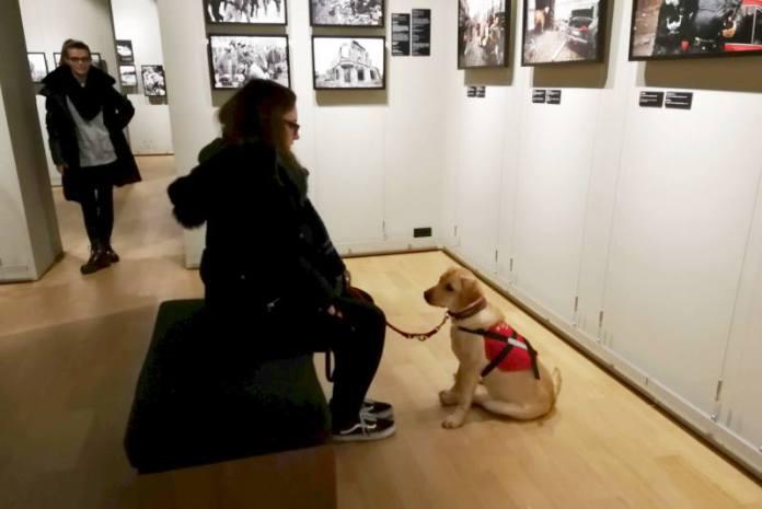Muzej ratne fotografije otvorio vrata psima pomagačima [FOTO]
