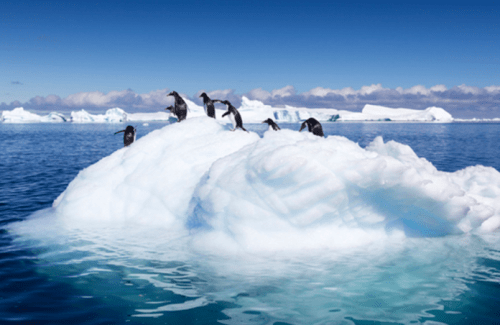 """Exposing The Bogus """"97% Consensus"""" Claim Over Climate Change 'Science'"""