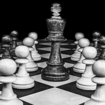 big boss alpha chess wma