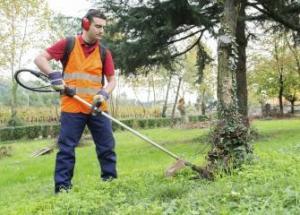 Zetetick Handy Person/Gardener handy person job Handy Person Job iu 300x215